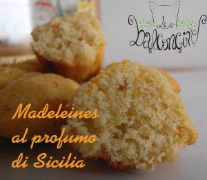 Madeleines al profumo di Sicilia 2