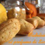 Madeleines al profumo di Sicilia