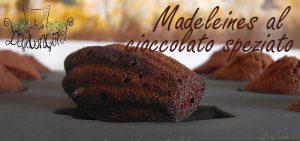 Madeleines cioccolato speziato 3
