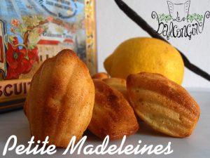 Petite Madeleines 3