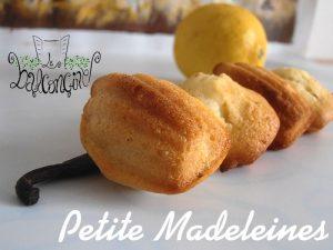 Petite Madeleines 2
