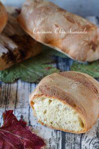 pane con 1 grammo di lievito